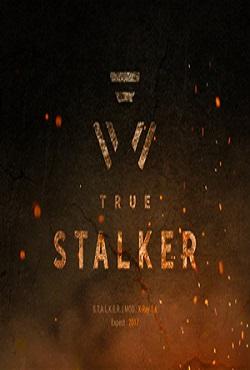 True Stalker Настоящий Сталкер