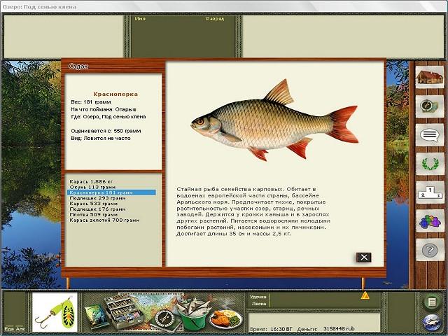 русская рыбалка где клюет