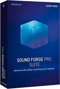 SONY Sound Forge Pro 13